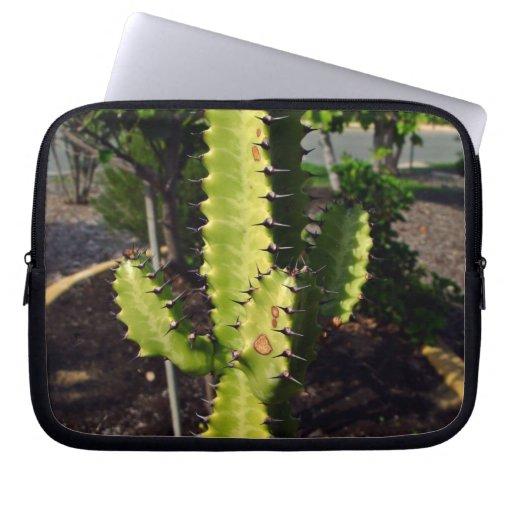 Cactus de punta debajo de la sombra funda ordendadores