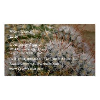 Cactus de punta rojo tarjetas de visita
