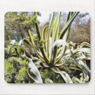 Cactus del agavo alfombrillas de ratón