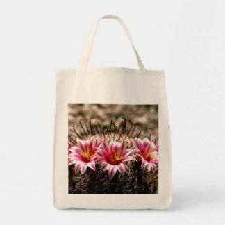 Cactus del anzuelo bolsas