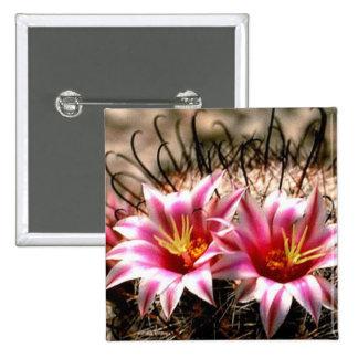 Cactus del anzuelo pins