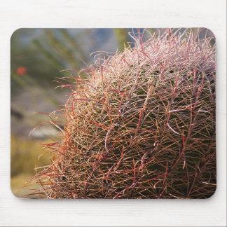 Cactus del anzuelo alfombrilla de ratones