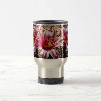 Cactus del anzuelo taza