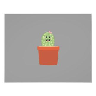 Cactus del bebé cojinete
