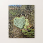 cactus del corazón puzzle con fotos