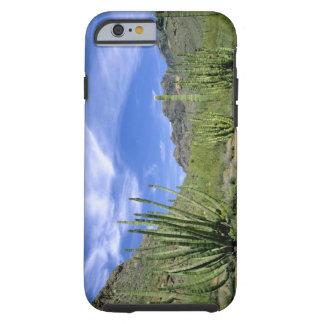 Cactus del desierto en el monumento nacional del funda para iPhone 6 tough