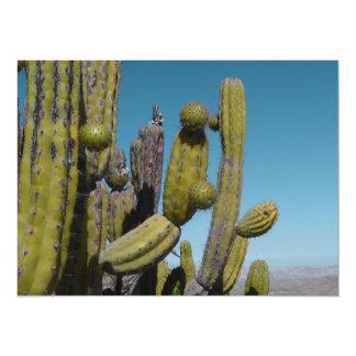 Cactus del desierto invitación 13,9 x 19,0 cm