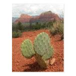 Cactus del higo chumbo en Sedona, Arizona - postal