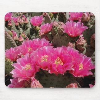 Cactus del higo chumbo mouse pads