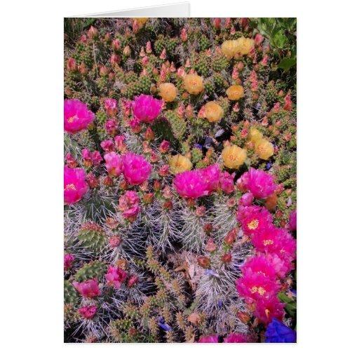 Cactus del higo chumbo tarjetón