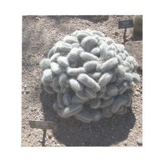 Cactus del Mammillaria Bloc De Notas