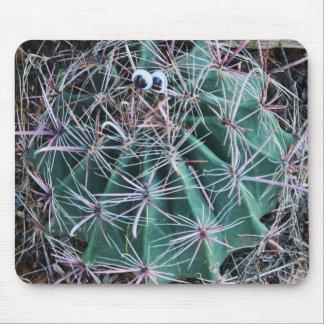 Cactus del ojo de Tucson Googley Tapete De Ratones