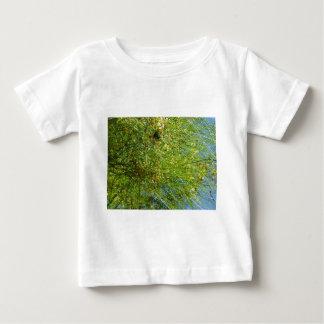 Cactus del parque del balboa del árbol tshirts