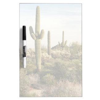 Cactus del Saguaro, Arizona, los E.E.U.U. Tablero Blanco