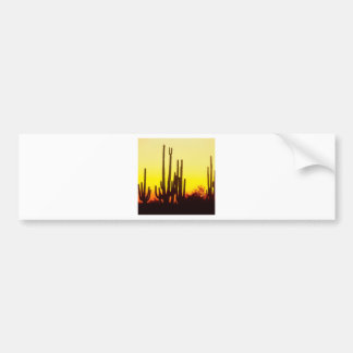 Cactus del Saguaro de la puesta del sol en Pegatina Para Auto