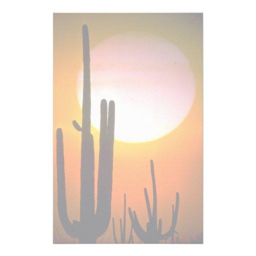 Cactus del Saguaro, desierto de Sonoran, desierto Papeleria De Diseño