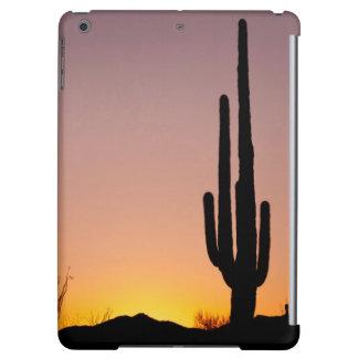 Cactus del Saguaro en la puesta del sol