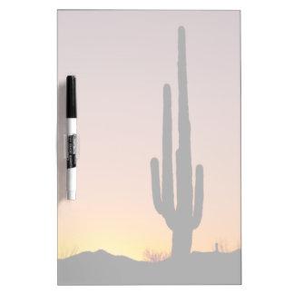 Cactus del Saguaro en la puesta del sol Tablero Blanco