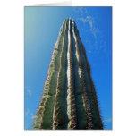 Cactus del Saguaro Felicitación