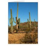 Cactus del Saguaro Tarjeta