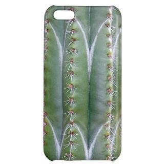 Cactus del tubo de órgano