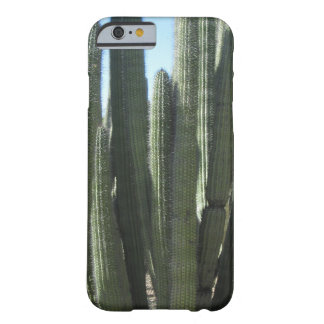 Cactus del tubo de órgano funda de iPhone 6 barely there
