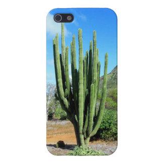 Cactus del tubo de órgano iPhone 5 funda