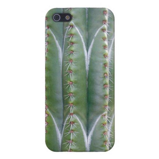 Cactus del tubo de órgano iPhone 5 fundas