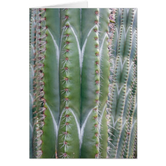 Cactus del tubo de órgano tarjeta de felicitación