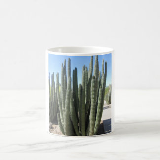 Cactus del tubo de órgano taza mágica