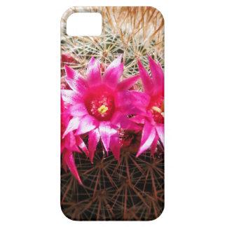 ¡Cactus dirigido rojo del irlandés, iPhone 5 Carcasa