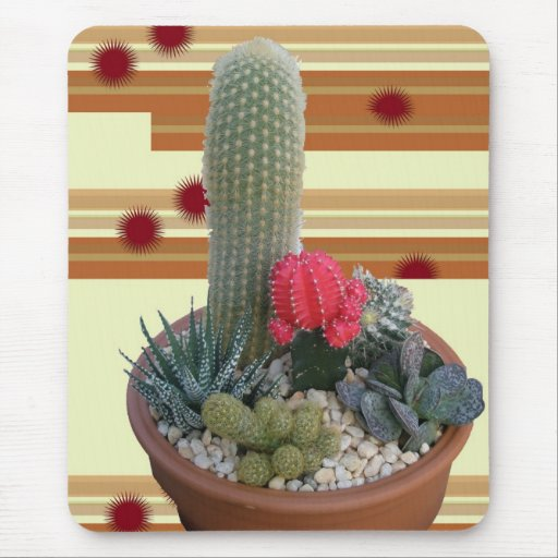Cactus Dish Garden 2 Mouse Pad from Zazzlecom