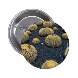 Cactus, echinocactus grusonii pinback button
