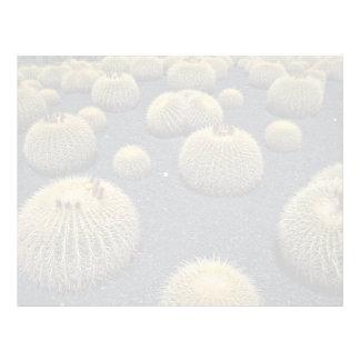 Cactus, echinocactus grusonii letterhead template