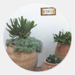 Cactus en potes de la terracota etiquetas redondas
