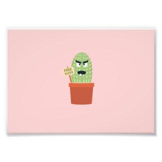 Cactus enojado con los abrazos libres cojinete