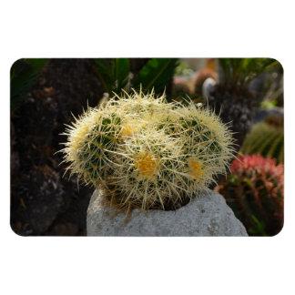 Cactus Flexi Magnet