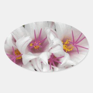 Cactus Floral Blossoms Destiny Gardens Stickers