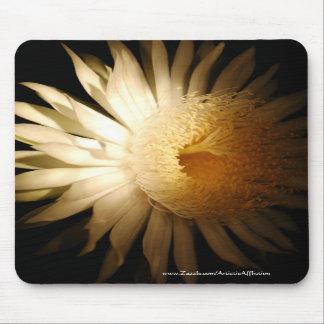 Cactus floreciente de la noche - Mousepad