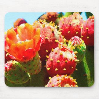 Cactus floreciente del Amy Vangsgard Alfombrilla De Raton