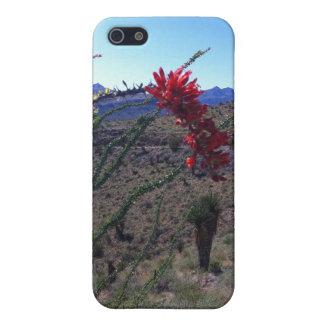 Cactus floreciente del Ocotillo iPhone 5 Fundas