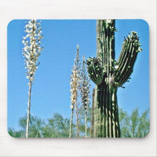 Cactus floreciente del Saguaro, yuca Alfombrillas De Ratón