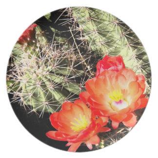 Cactus floreciente en la noche platos para fiestas