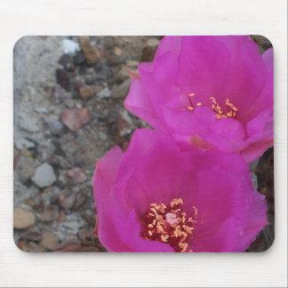 cactus floreciente frecuencia intermedia tapetes de ratón