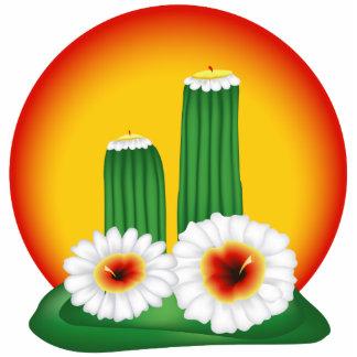 Cactus floreciente pin fotoescultura