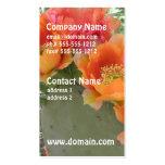 Cactus floreciente plantilla de tarjeta de visita