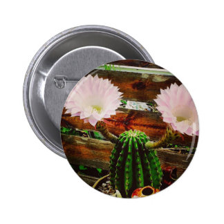 Cactus floreciente #succulent pin redondo de 2 pulgadas