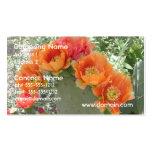Cactus floreciente tarjeta personal
