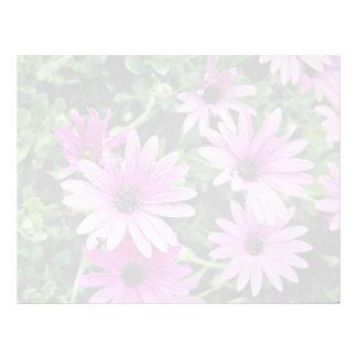 Cactus flores de Osteospermum Plantillas De Membrete