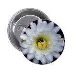 Cactus Flower 4355 Button